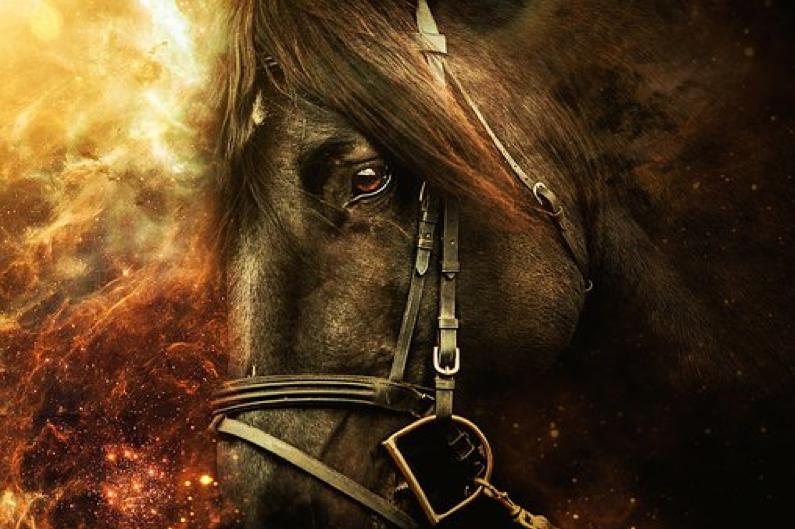Il cavallo, il cavalcare e l'erotismo